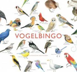 SPEL BIRD BINGO